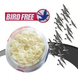 BIRD FREE VOLATILES
